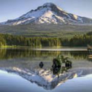 Mount Hood Reflection On Trillium Lake Poster