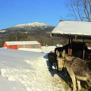 Mount Monadnock From East Hill Farm Poster