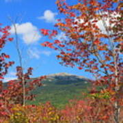 Mount Monadnock Red Maple Foliage Poster