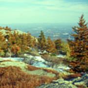 Mount Monadnock Spruce Injury Poster