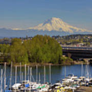 Mount Rainier From Thea Foss Waterway In Tacoma Poster