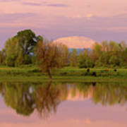 Mount St Helens Reflection During Sunset Poster