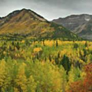 Mount Timpanogos Fall Colors Poster