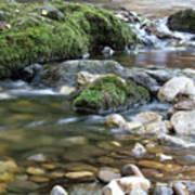 Mountain Creek Spring Nature Scene Poster
