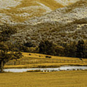 Mountain Farm With Pond In Artistic Version Poster