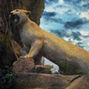 Mountain Lion - Paint Fx Poster