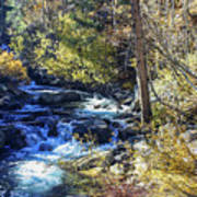 Mountain Stream In Fall Poster