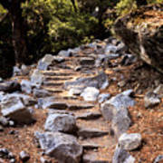 Mountain Trail Poster