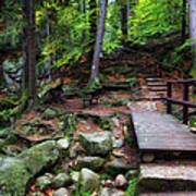 Mountain Trail With Staircase In Autumn Forest Poster