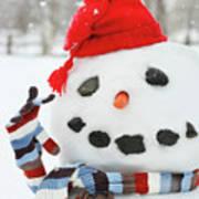 Mr. Snowman Poster