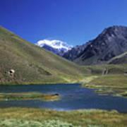 Mt Aconcagua And Laguna Horcones Poster