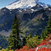 Mt. Baker Autumn Poster