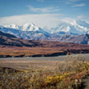 Mt Denali View From Eielson Visitor Center Poster