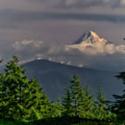 Mt Hood From Grassy Knoll Poster