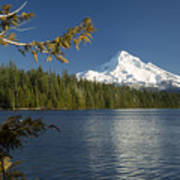 Mt Hood From Lost Lake Poster