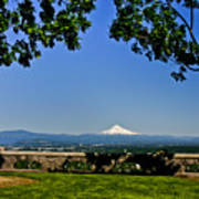 Mt Hood From Rocky Butte Poster