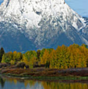 Mt Moran From Ox Bow Bend Poster