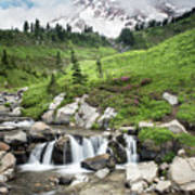 Mt Rainier Paradise Portrait Poster