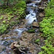 Mt. Spokane Creek 2 Poster