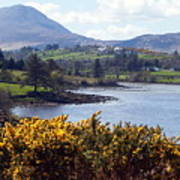 Muckish ,irish Landscape  Poster