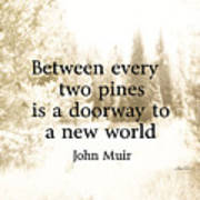 Muir Quote On Sepia  Poster