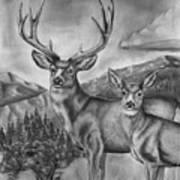 Mule Deer Heaven Poster