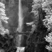 Multnomah Falls Bw Poster