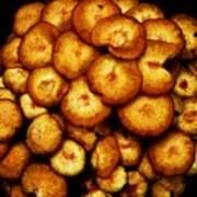 Mushroom Hug Poster