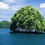 Mushroom-shaped Island Poster