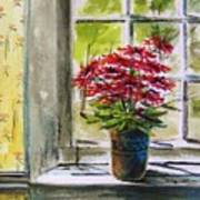 Musing-gerberas At The Window Poster