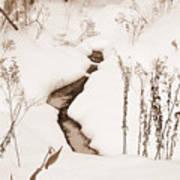 Muskoka Winter 1 Poster