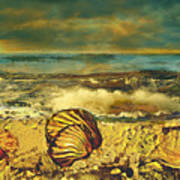 Mussels On The Beach Poster