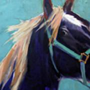 Mustang Sally Poster