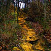 Mustard Hill Poster