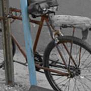 My Bike Poster