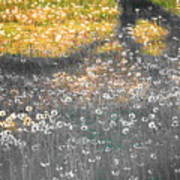 My First Manipulated Image Crowd Of Dandelions In Shadow Of Tree Branches Poster