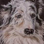 My Funny Valentine - Dog Portrait Poster