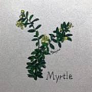 Myrtle Poster