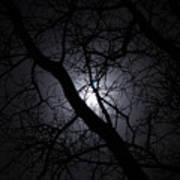 Mystical Moon Poster
