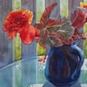 Nancy's Begonias Poster