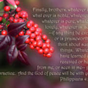 Nandina Berries Phil.4 V 8-9 Poster