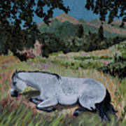 Napping Horse Poster