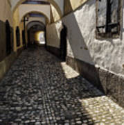 Narrow Cobblestone Alley Ribji Trg Or Fish Square From Cankar Qu Poster