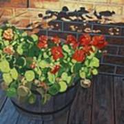 Nasturtiums In Late Light Poster