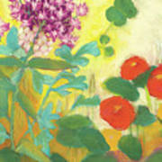 Nasturtiums, Rose Milkweed And Rue Poster