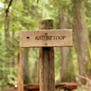 Nature Loop Sign Poster