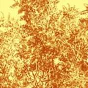 Natures Trees In Brown And Yellow Poster