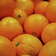 Navel Oranges Poster
