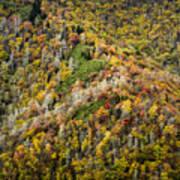 Nc Fall Foliage 0543 Poster