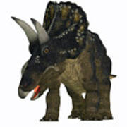 Nedoceratops On White Poster